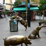 Brass Pigs in City of Adelaide
