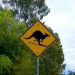 Street sign that shows a kangaroo skiing