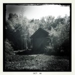 Artistically done black and white building in woods