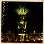 Dark picture with palm tree and lights artistically done