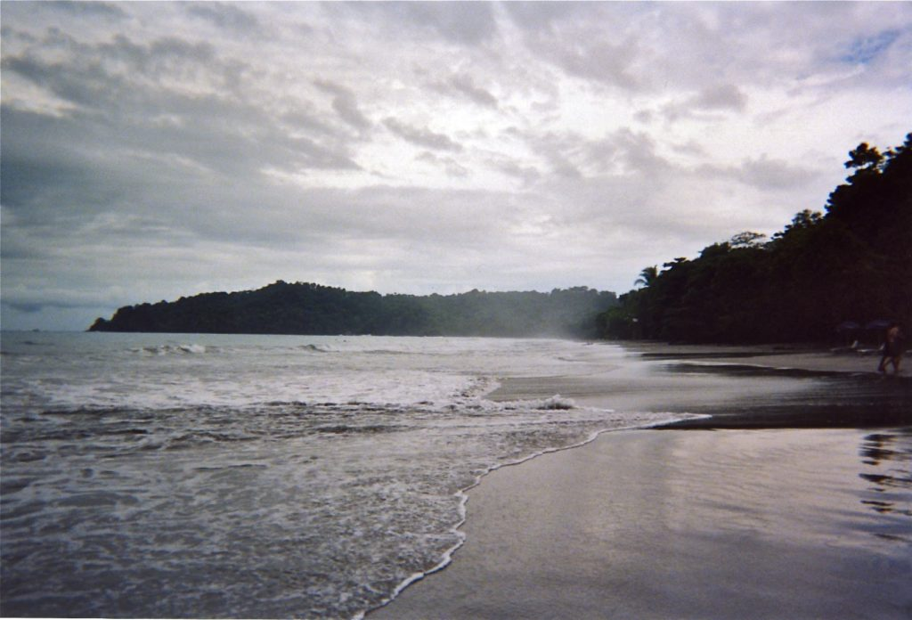 Beach rainforest - Manuel Antonio (5)