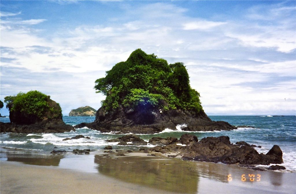 Beach rainforest - Manuel Antonio (1)