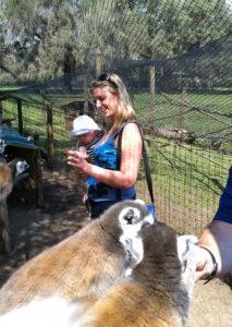 Looking at the lemurs at the giraffe ranch