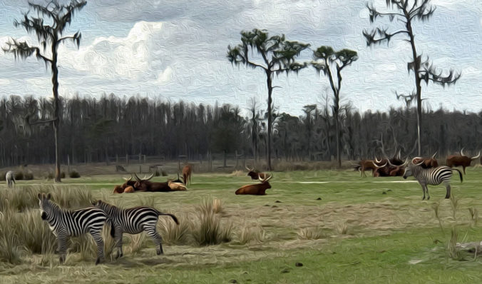 Oil Painting rendition of Safari Wilderness